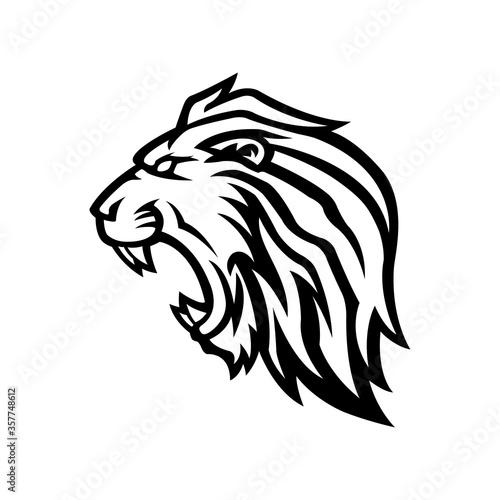 Fototapety, obrazy: lion head mascot logo vector design template