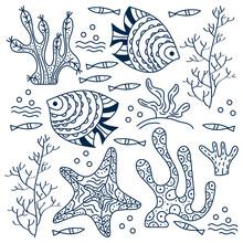 Sea Floor, Underwater World. F...