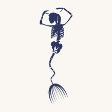 Illustrations Of Skeleton Of B...