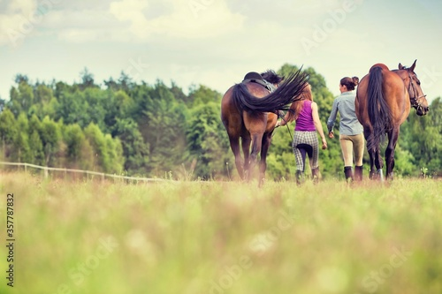Photo Young girls riding horses bareback in field