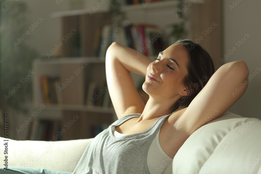 Fotografie, Obraz Satisfied tenant resting at home on a couch at night