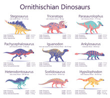 Ornithischian Dinosaurs. Set Of Ancient Creatures With Information Of Size, Weigh, Classification And Period Of Living. Colorful Vector Illustration Of Dinosaurs Isolated On White Background.