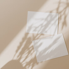 Blank Paper Sheet Cards With M...