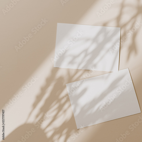Blank paper sheet cards with mockup copy space with sunlight shadow on beige background Wallpaper Mural