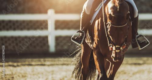 Equestrian Facility Horse Rider Tapéta, Fotótapéta