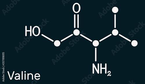Valine, Val, L-valine amino acid molecule Fototapet