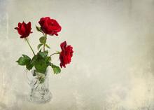 Three Red Fresh Luxurious Rose...