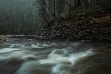 River In A Rainy Forest