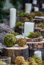 Balls Of Green Moss, White Candles In Glass Vases Stand On Sawn Tree Stumps, Decoration Of The Location In A Rustic Style. Close-up Shot In Natural Light.