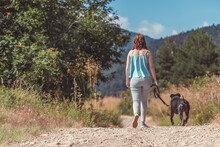Girl From The Back Walking With A Pitbull Dog On A Dirt Road