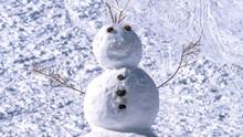 Panorama Jolly Man Made Snowma...