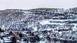 canvas print picture - Panorama Mountain homes in Park City Utah with snowy nature landscape in winter
