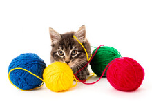 Kitten With Balls Of Threads. ...