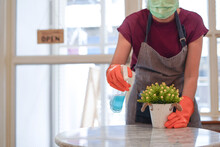 Woman In Mask And Gloves Clean...