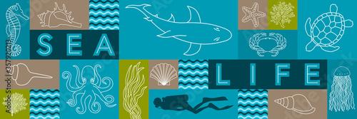 Bannière sur la vie marine avec des illustrations filaire d'animaux, de coquillage, de corail et une silhouette de plongeur Tablou Canvas