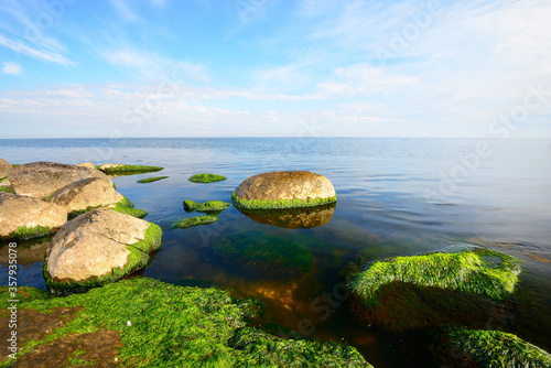 Fototapeta Crystal clear blue water of the Baltic sea on a sunny summer day. Dramatic sky with cirrus clouds. Mossy stone close-up. Idyllic seascape. Summer vacations, recreation theme. Germany obraz