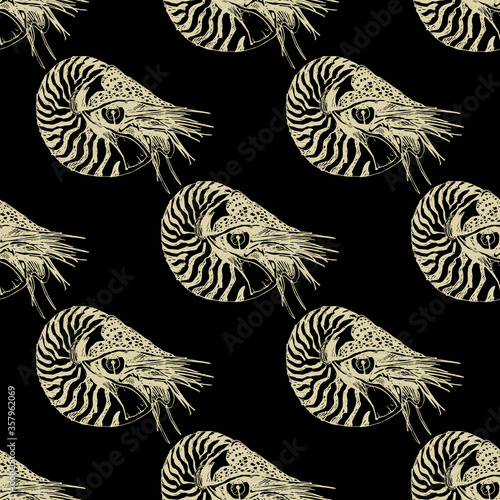 Seamless geometrical pattern with hand drawn linear sketches of ocean mollusk Nautilus Pompilius Canvas-taulu