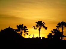 Atardecer, La Palma, Cielo, árbol, Sol, Silueta, Playa, Paisaje, árbol, Tropical, Amanecer, Naturaleza, Isla, Palmera, Anaranjada, Anochecer, Nube, Viajando, Verano, Oceáno, Hermoso, Variopinto, Calif
