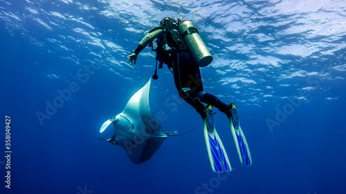 Diver admiring the flight of a giant manta ray in the blue Canvas Print