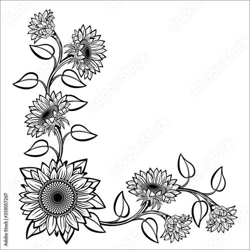 Sunflower #358057267