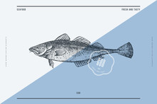 Hand-drawn Cod Vector Illustra...