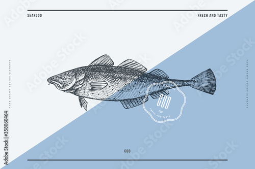 Cuadros en Lienzo Hand-drawn cod vector illustration