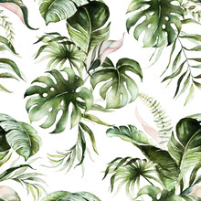 Green Tropical Leaves On White...