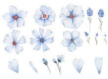 Set Of Blue Flowers Of Differe...