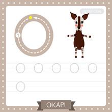 Letter O Uppercase Tracing Practice Worksheet Of Okapi Standing On Two Legs