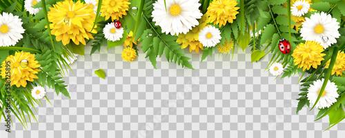 Spring time border Wallpaper Mural