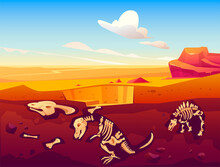 Fossil Dinosaurs Excavation, P...