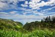 canvas print picture Maui