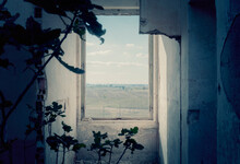 A Rough Window Inside An Old Abandoned House (reduced To Ruins, Dark Lighting, With Growing Fig Trees), Showing A Green Serene Countryside.