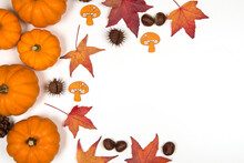 Autumn Flat Lay With Pumpkins And Pine Cones And Autumn Leaves With Copy Space