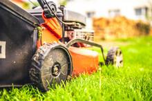 Lawn Mower Cut Grass. Garden W...