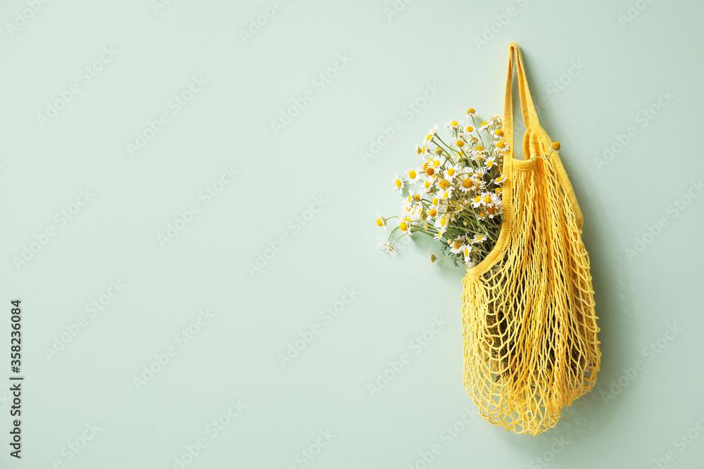 Fototapeta Beautiful chamomiles in bag hanging on color wall