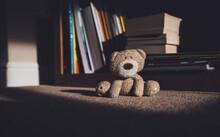 Teddy Bear Is Sitting On Carpe...