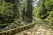 Stone Hiking Trail In The Moun...