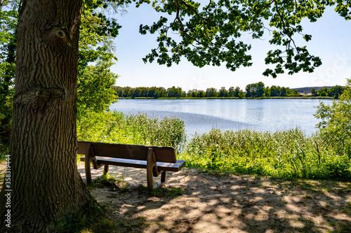 Obraz romantische Landschaft auf der Insel Usedom - fototapety do salonu