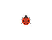 Lady Beetle Vector Flat Icon. Isolated Ladybug Emoji Illustration