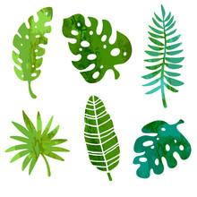 Tropical Green Leaves Set