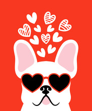 Cute Cartoon French Bulldog. Hand Drawn Vector Illustration Art On Red Background .White French Bulldog Wearing Red Sunglasses.