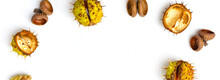 Chestnuts On White Background....