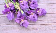 Bouquet In A Bunch Of Purple I...