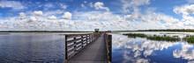 Boardwalk Overlooking The Flooded Swamp Of Myakka River State Park
