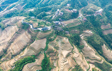 Aerial View Of Terraced Fields...