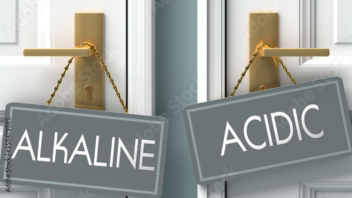 acidic or alkaline as a choice in life - pictured as words alkaline, acidic on d Wallpaper Mural