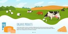 Cows In Farm Vector Illustrati...