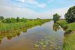 Am Kehdinger Moor (Niedersachsen)