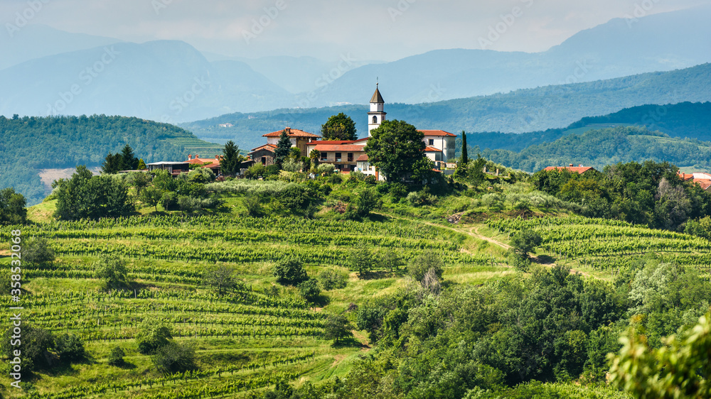 Fototapeta View of famous wine region Goriska Brda hills in Slovenia.